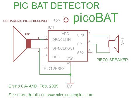 PicoBat - www micro-examples com